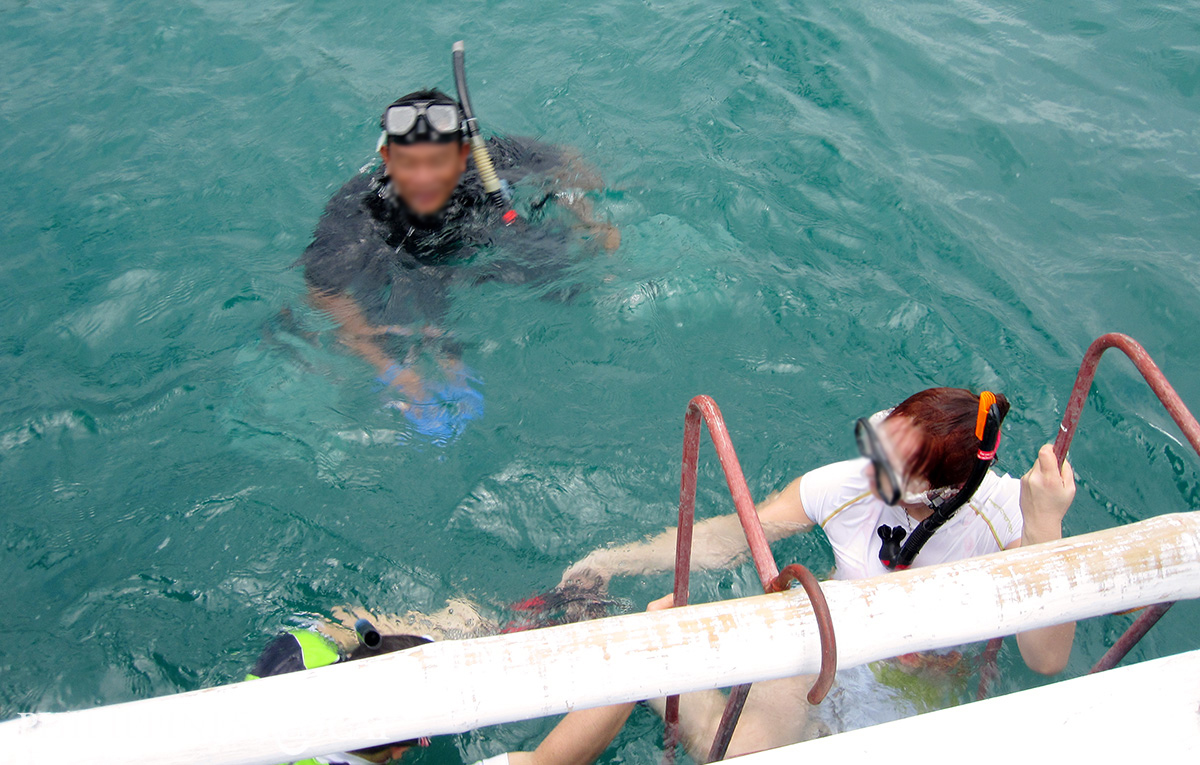 Donsol Whale Shark Snorkeling